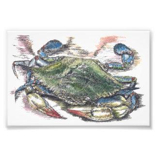 青カニの芸術の写真のプリント フォトプリント
