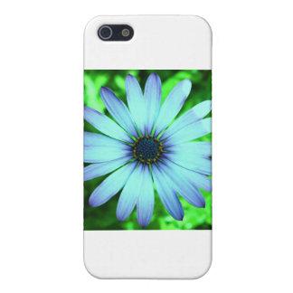 青デイジー iPhone 5 カバー