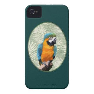 青及び金ゴールドのコンゴウインコ Case-Mate iPhone 4 ケース