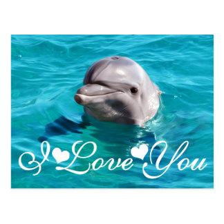 青海原の写真のイメージI愛のイルカ ポストカード