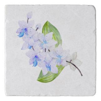 青海原色の蘭Trivet トリベット