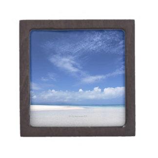 青空および海2 ギフトボックス