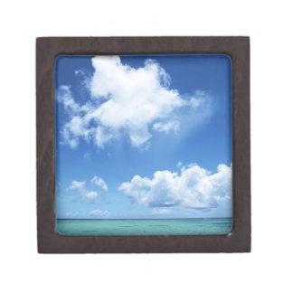 青空および海 ギフトボックス