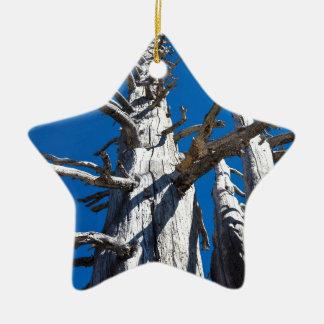 青空が付いている3本の骨格木 セラミックオーナメント