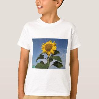 青空に対するヒマワリ Tシャツ