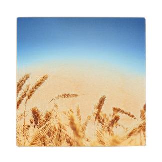 青空に対する小麦畑 ウッドコースター