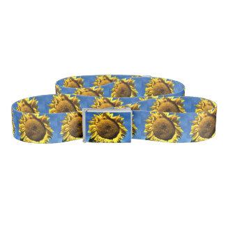 青空に対する色彩の鮮やかで大きく黄色いヒマワリ ベルト
