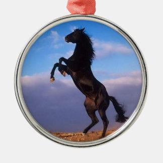 青空の写真を持つ美しい養育黒い馬 メタルオーナメント
