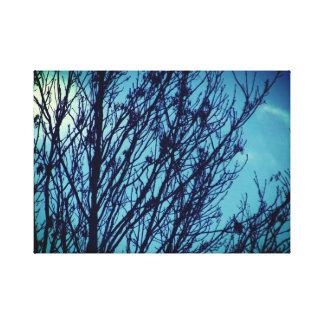 青空の木のキャンバス キャンバスプリント