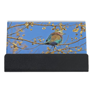 青空の枝のかわいく小さくカラフルな鳥 デスク名刺ホルダー