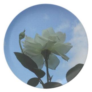 青空の白いバラ プレート