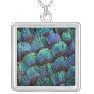 青緑色のキジの羽のデザイン シルバープレートネックレス
