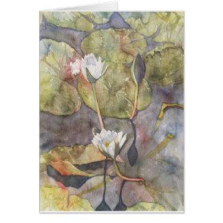 静かな朝Waterlillies グリーティングカード