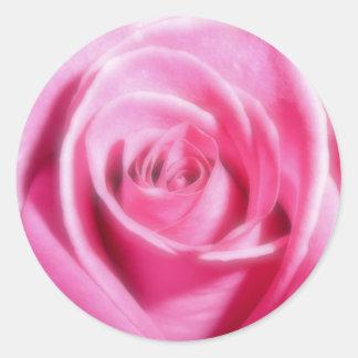 静かにピンクのバラのステッカー ラウンドシール