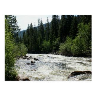 静止したコロラド州山の川 ポストカード