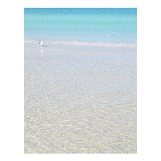 静止したビーチの鳥 レターヘッド