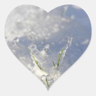 非常に凍る芝生の茎のクローズアップ ハートシール