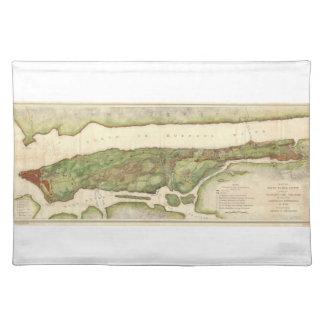 革命的な地図1878年の間のニューヨークシティの地図 ランチョンマット