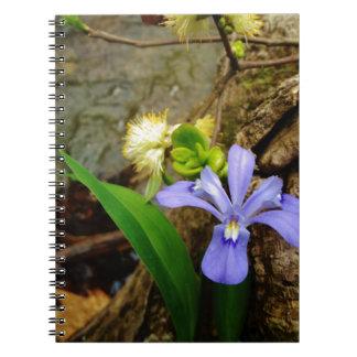頂点に達された小型アイリス青い紫色の白い花 ノートブック