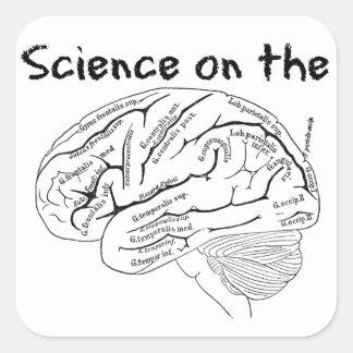頭脳の科学 スクエアシール