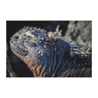 頭部および脊柱のウミイグアナのクローズアップ キャンバスプリント