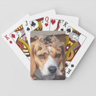 頭部の葉及びドングリを持つおもしろいなビーグル犬 トランプ