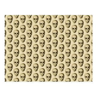 頭骨を搭載するベージュパターン ポストカード