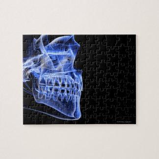 顎の骨 ジグソーパズル