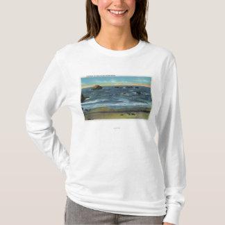 顔の石、猫および子ネコのBandonのビーチの眺め Tシャツ