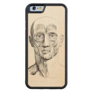 顔(ca. 1852年)の人間の解剖学|筋肉 CarvedメープルiPhone 6バンパーケース