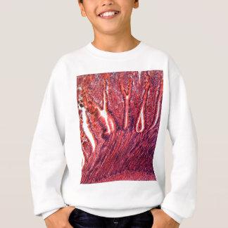 顕微鏡の下の腸の細胞 スウェットシャツ