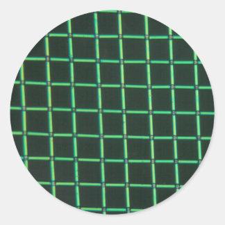 顕微鏡の下のPolylactic酸 丸形シールステッカー