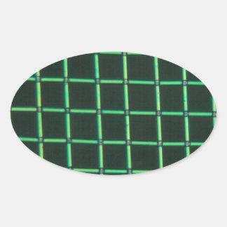 顕微鏡の下のPolylactic酸 卵形シール・ステッカー
