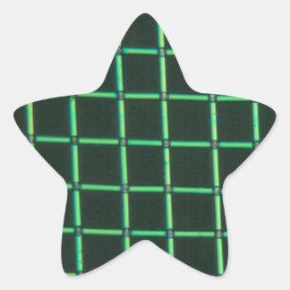 顕微鏡の下のPolylactic酸 星形シール・ステッカー