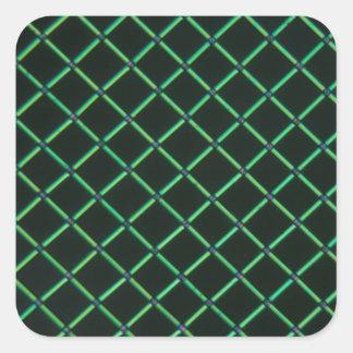顕微鏡の下のPolylactic酸 正方形シールステッカー