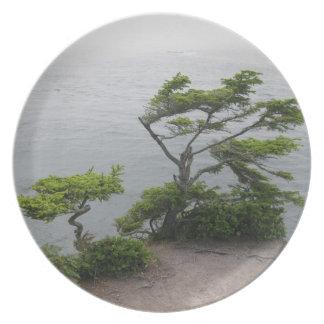 風に吹かれた木 プレート