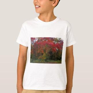 風のささやき Tシャツ