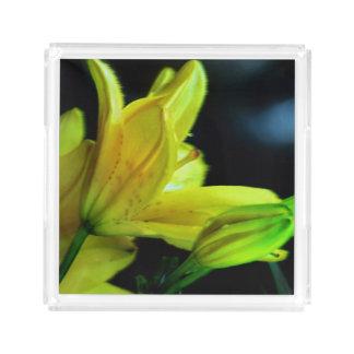 風効果の黄色いユリ アクリルトレー