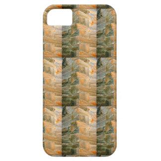 風化させたありの小屋の箱 iPhone SE/5/5s ケース