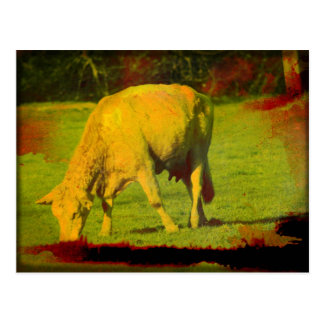 風化させた牧草地 ポストカード