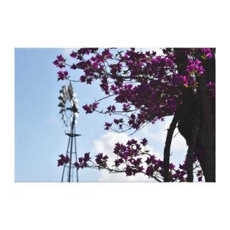 風車及びブーゲンビリアクイーンズランドオーストラリア キャンバスプリント