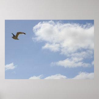 飛びます(鳥、空、雲) ポスター