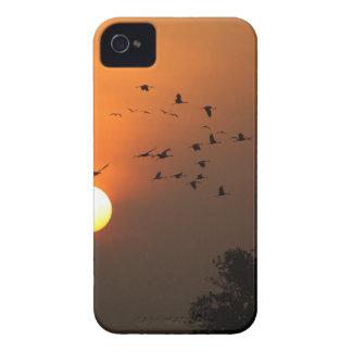 飛んでいるなクレーンの群との日の出 Case-Mate iPhone 4 ケース