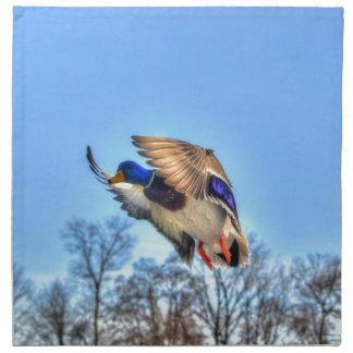 飛んでいるなマガモのアヒルのドレークの野性生物の写真 ナプキンクロス