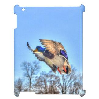 飛んでいるなマガモのアヒルのドレークの野性生物の写真 iPadカバー