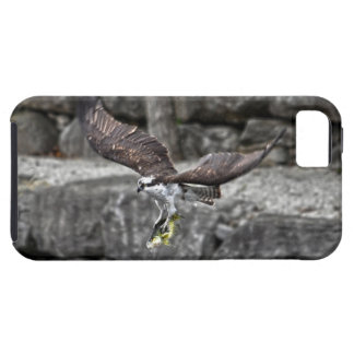 飛んでいるなミサゴ及び川の魚の野性生物の写真場面 iPhone SE/5/5s ケース
