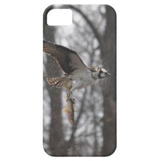 飛んでいるなミサゴ及び魚の野性生物の写真場面 iPhone SE/5/5s ケース