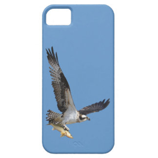 飛んでいるなミサゴ及び魚の野性生物の写真撮影 iPhone SE/5/5s ケース