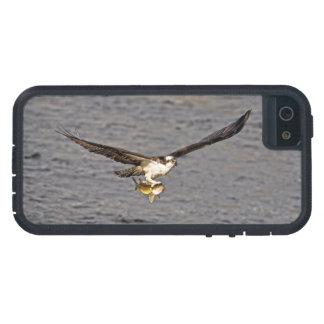 飛んでいるなミサゴ及び魚4の野性生物の写真撮影 iPhone SE/5/5s ケース