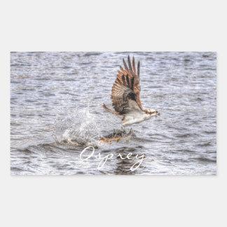 飛んでいるなミサゴ及び魚HDRの野性生物の写真のギフト 長方形シール